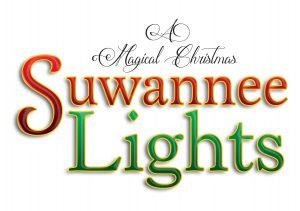 Suwannee Lights @ Spirit of the Suwannee Music Park   Live Oak   Florida   United States